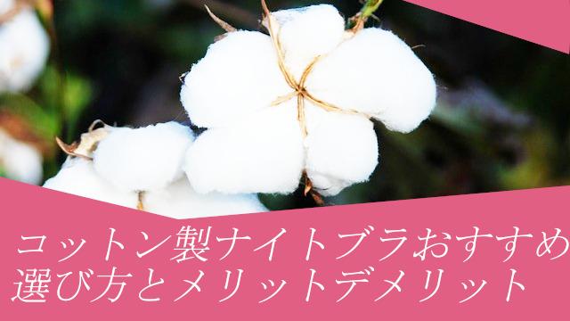 コットン製ナイトブラおすすめベスト5!綿ブラの選び方とメリットデメリット詳細解説